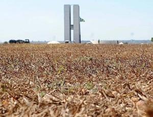 Grama completamente seca em frente ao Congresso Nacional em Brasília