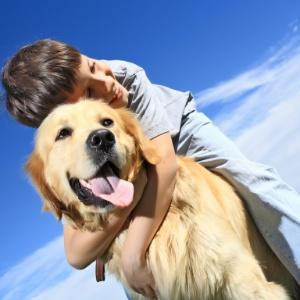 Os gatos também ofereceriam proteção para os bebês, mas o efeito seria menor do que com os cães - Shutterstock
