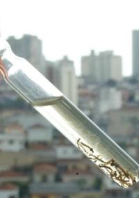 O mosquito da dengue se desenvolve em água parada