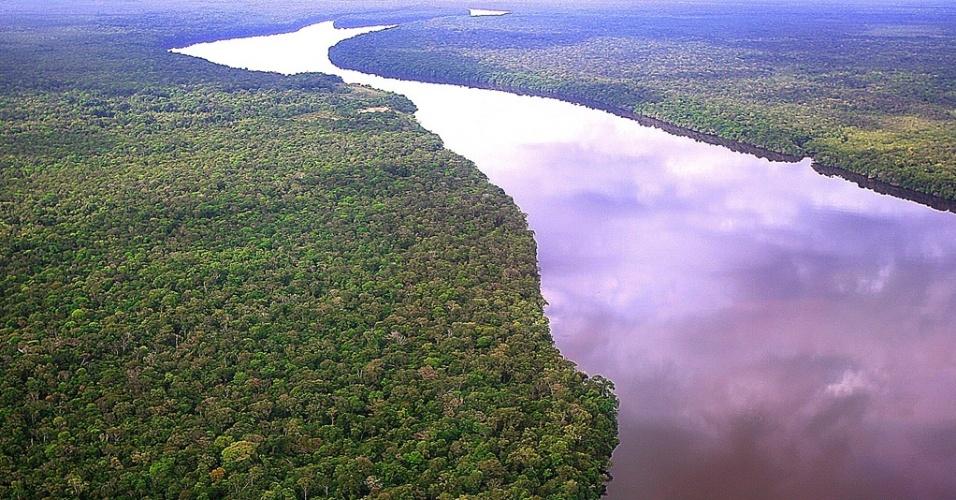 WAP, Mídia Indoor, Vista aérea de floresta na região do rio Negro, no Amazonas. Foto de outubro de 2007