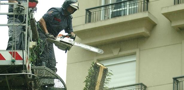 Apenas em 2011, o poder público de São Paulo autorizou o corte de 18.005 árvores